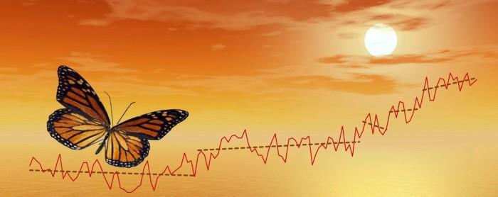 ButterflySteps